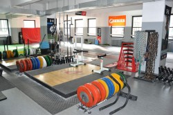 independent personal trainer nyc space