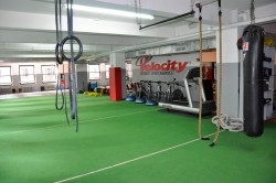 velocity sports performance personal training nyc